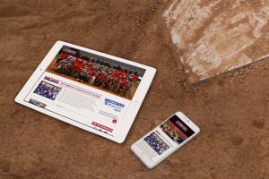New NAGAAA Website Announced